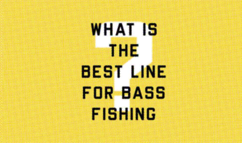 Picking the Best Line For Bass Fishing (Beginner and